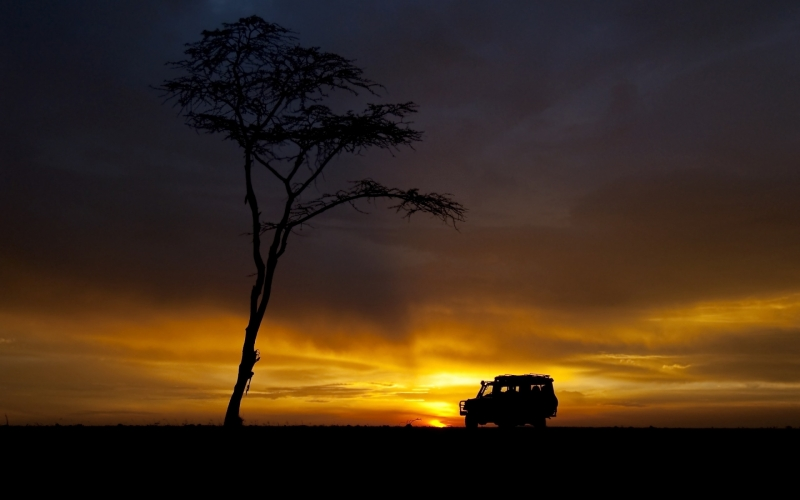 For an African Adventure in style, Offbeat Safaris is your go-to company in Kenya.