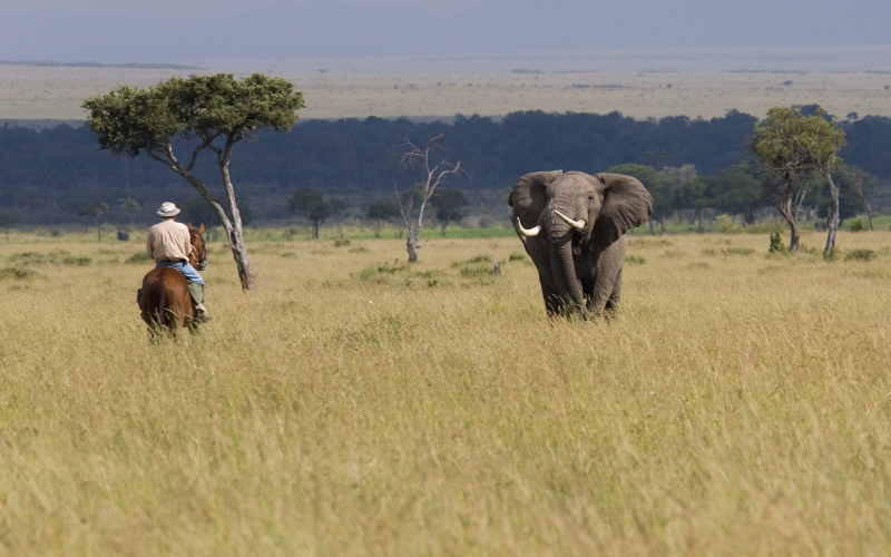Offbeat Safaris was Founded in 1990 by Adventurer Tristan Voorspuy