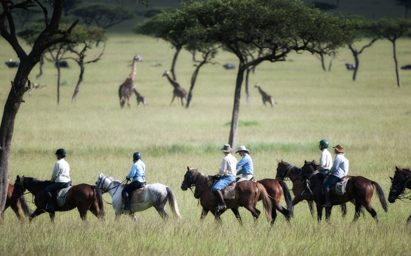 For pure exhilaration look no further than the Offbeat Riding Safari
