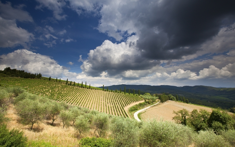Tuscany is a Land of Hill Towns and Magical Villas, Castello di Casole