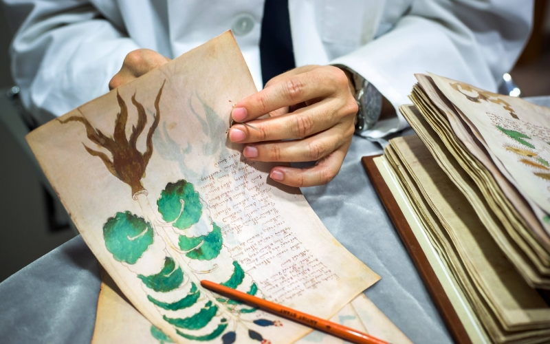 The Voynich Manuscript ... Fraught with Mystery and Ancient Lore