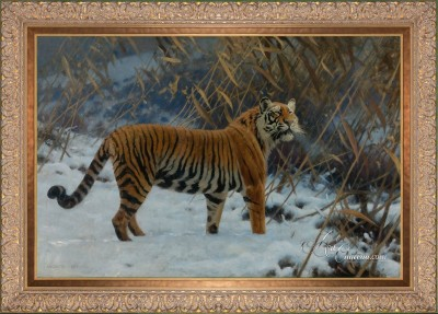 A Tiger Prowling in the Snow, after Hugo Ungewitter
