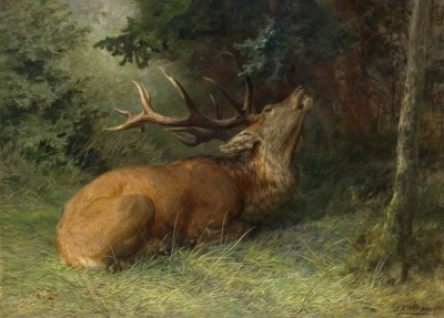 Stag Resting, c.1895, Oil on Canvas
