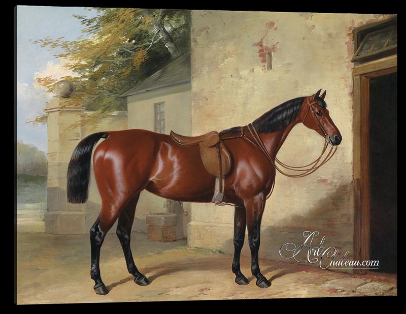 Gesattelter Brauner, after Painting by William Barraud