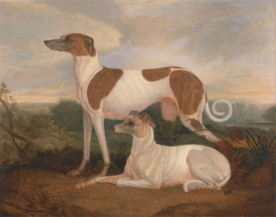 Two Greyhounds in a Landscape, c.1830, Oil on Canvas