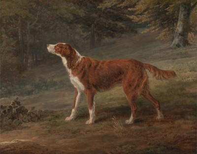 Ranger, A setter, Owned by Elizabeth Gray, c.1797, Oil on Canvas