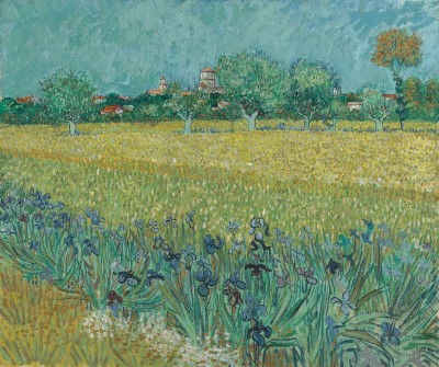 A Field With Irises Near Arles, France, c.1889, Oil on Canvas