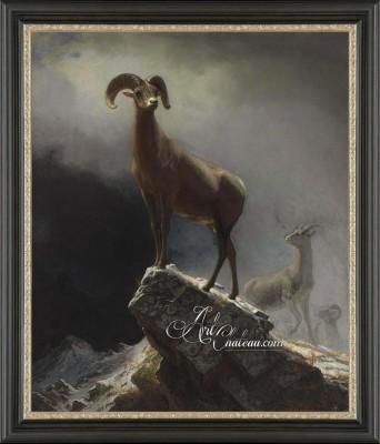 Big Horn Sheep, after Albert Bierstadt