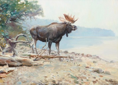 Moose at Lake McDonald, c.1910, Oil on Canvas